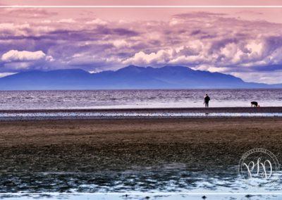 La mer rose