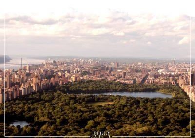 Vue de NY depuis top of the rock